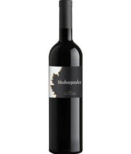 Maienfelder Pinot Noir AOC 2017 (Komminoth)