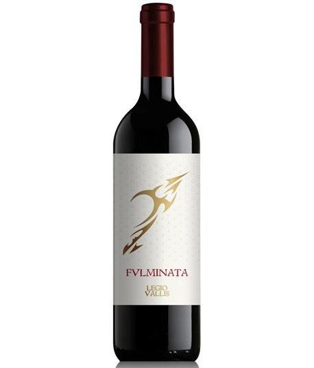 Fulminata appassimento Vin de Pays 2016 (Julius)